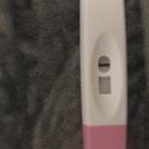 Shadha Ben ik zwanger als ik dit zie ?